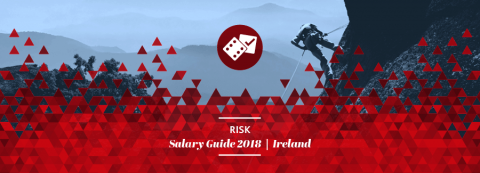 ireland-risk-salary-benefits-survey-guide